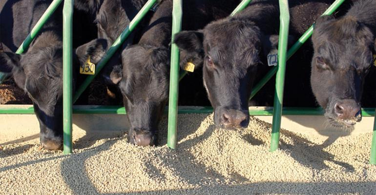 Friend in Feed: Protein Price Changes Ahead