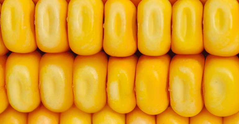 Judge rules that Vermont GMO law stands