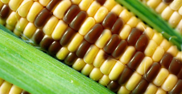 FMI, GMA applaud Senate agreement on national GMO labeling standard