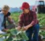 Law & Order: Food Safety, Farm Bill