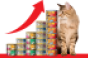 Cats with cans