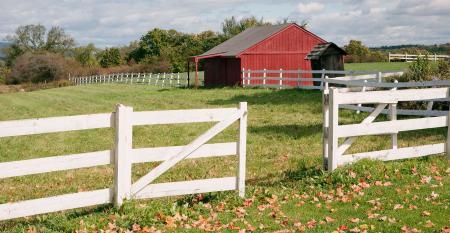 farm(T).jpg