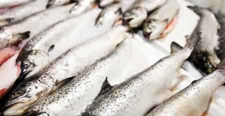 Avoid the bait and switch of seafood fraud